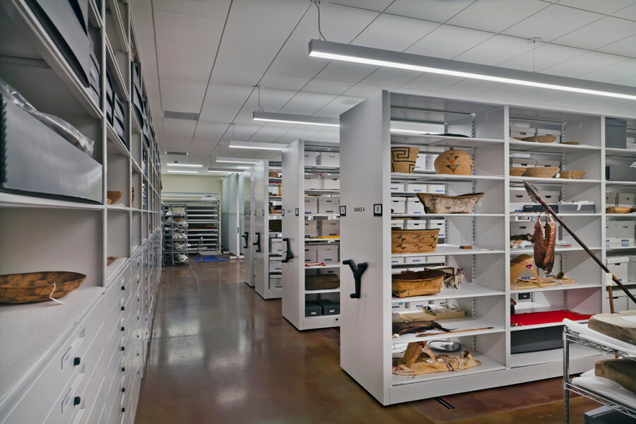 Museum Collection Shelves
